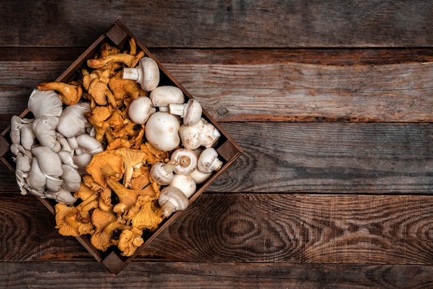 Wooden tray with raw oyster and chanterelle mushrooms on wooden table. copy space for your text. banner.