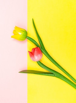 Wooden tulips contrasted with the background color.