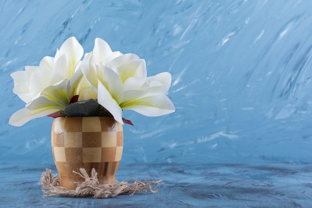 Деревянная ваза из белых цветов магнолии на синем.