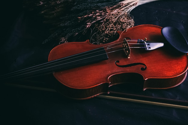 The wooden violin put beside dried flower,on grunge surface background,vintage and art tone