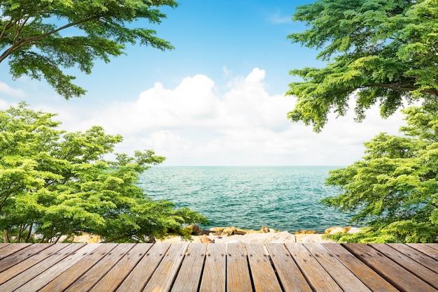 Wooden walkway at coast
