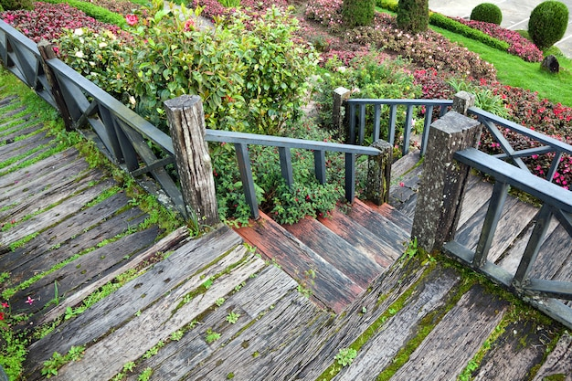 The wooden walkway in the park.