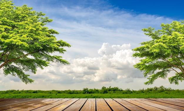 美しい田園風景の木製通路の視点