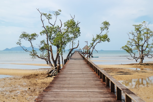 Wooden walkway with trees that lead to the sea from the beach.