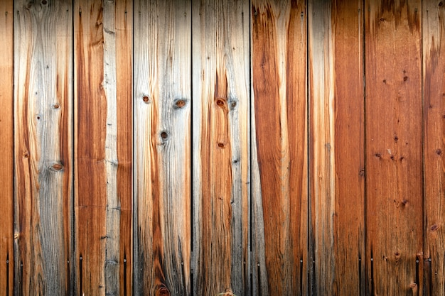 Wooden wall of brown boards with the image of the muzzle of the animal.