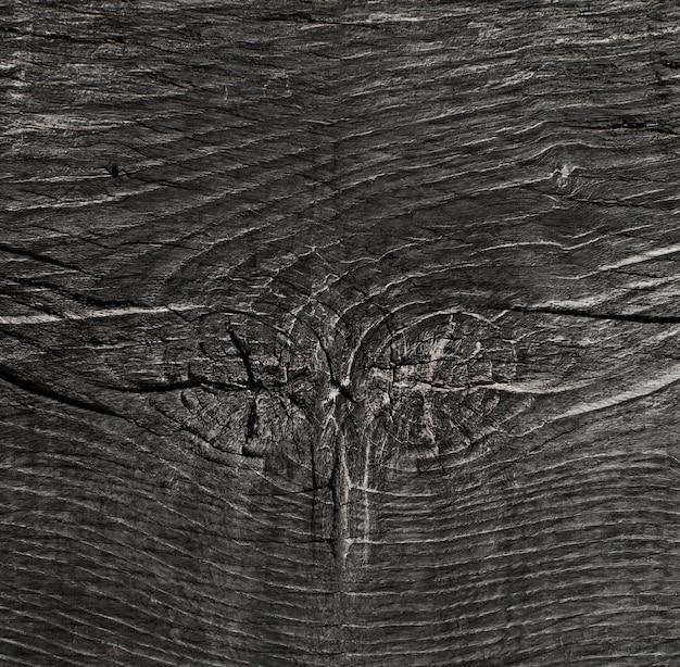 Struttura in legno caldo