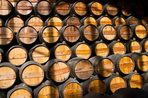 Wooden wine barrels on a cellar