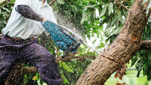 Woodman использует свою бензопилу, разрезавшую дерево