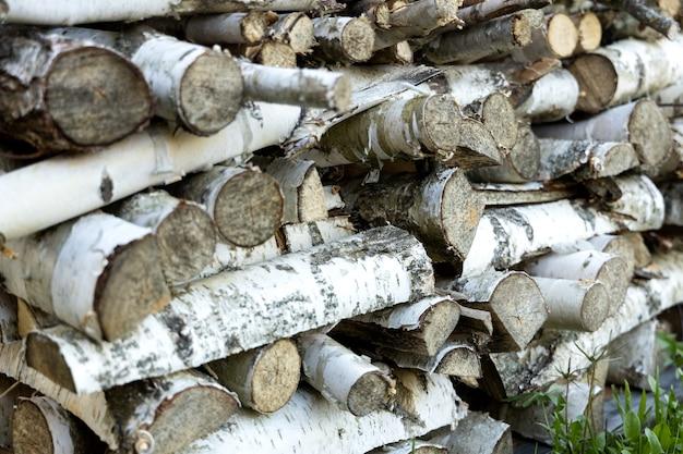 緑の芝生の上に並んで横たわっている白樺の薪のウッドパイル。