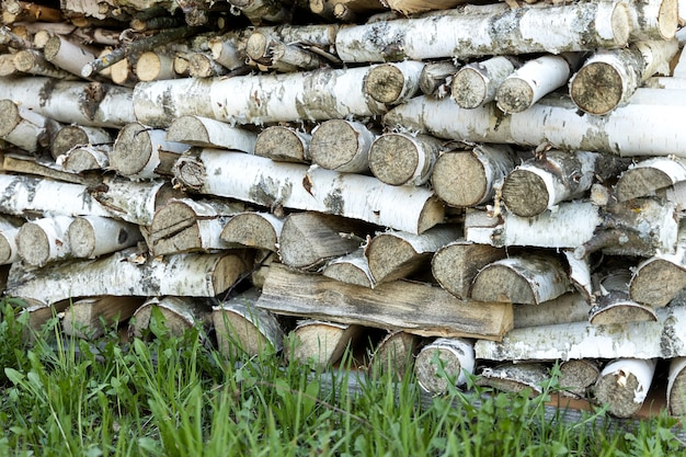 緑の草の上に横たわる白樺の薪のウッドパイル