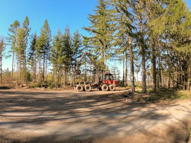森の中の木工。強風の後に倒れた木を掃除する。