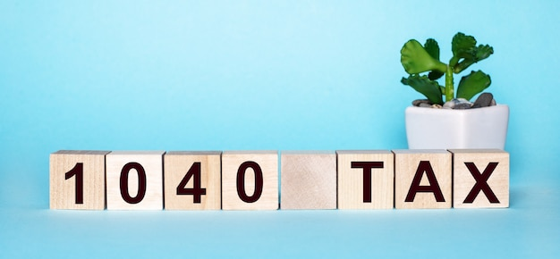 The word 1040 tax is written on wooden cubes near a flower in a pot on a light blue surface