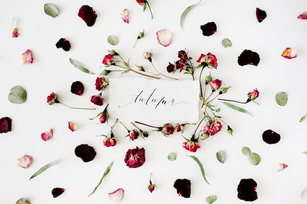 Word autumn written in calligraphy style on paper with pink, red roses, eucalyptus and leaves on white