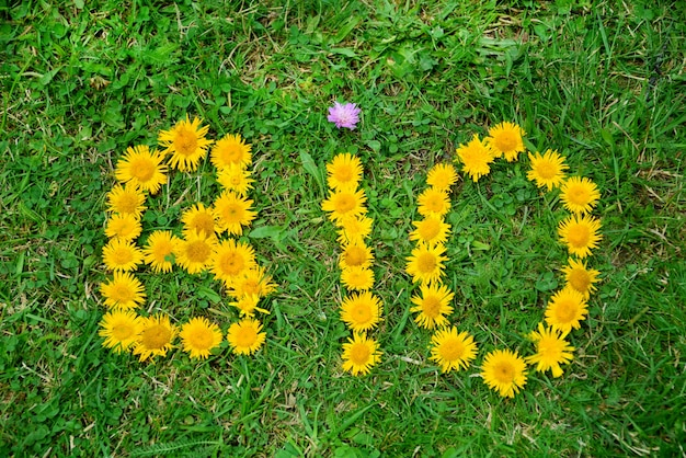 Bio parola fatta di fiori