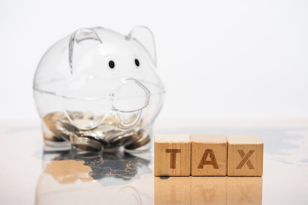 세계지도에 돼지 저금통과 단어 블록 세금. 소득, 지출, 세금, 재무 데이터.