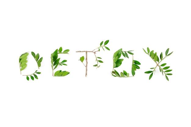 Слово детокс из листьев на белом
