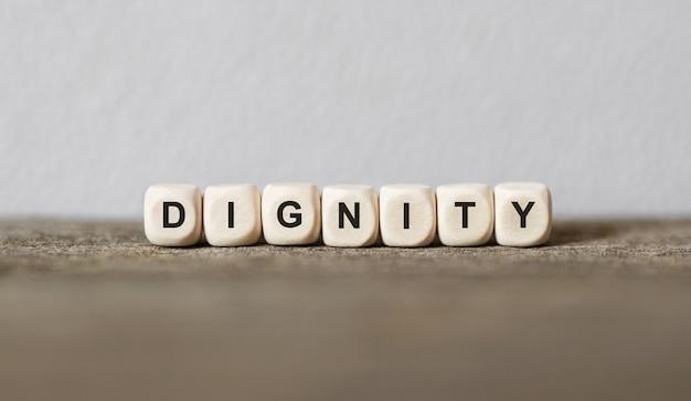 나무 빌딩 블록으로 만든 단어 dignity