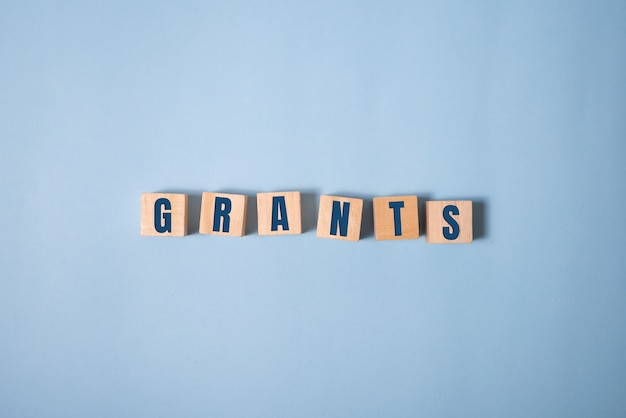 The word of grants on building blocks concept on blue.