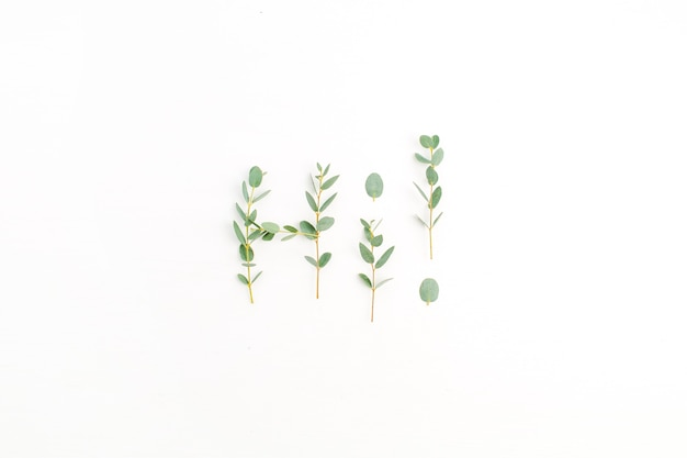 Word hi made of eucalyptus branch on white background. flat lay, top view