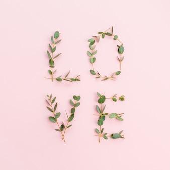 분홍색 배경에 유칼립투스 가지로 만든 단어 사랑. 평면 평신도, 평면도.