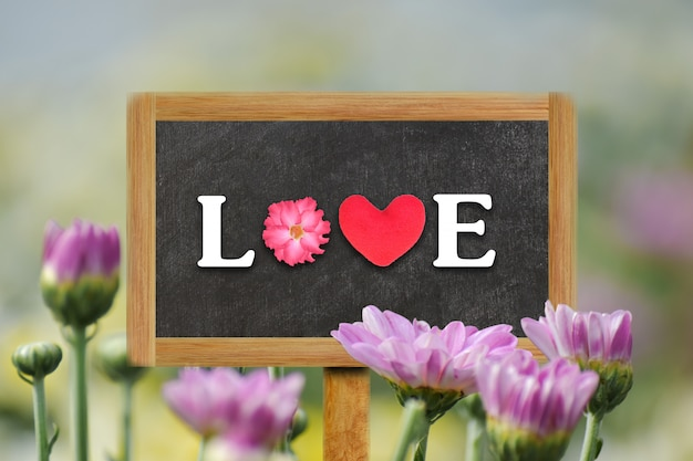 Word love written on wood board with soft blurred chrysanthemum flower in the background.