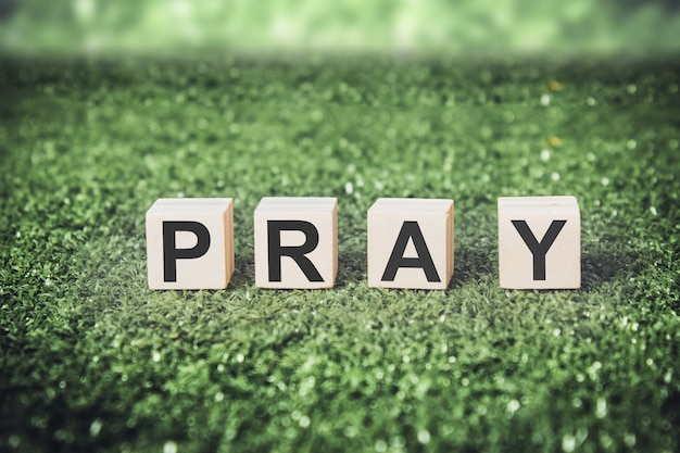 Word pray made from cubes or blocks on grass background.
