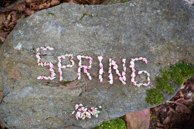 石の表面、平面図にピンクの花の花で作られた単語春。
