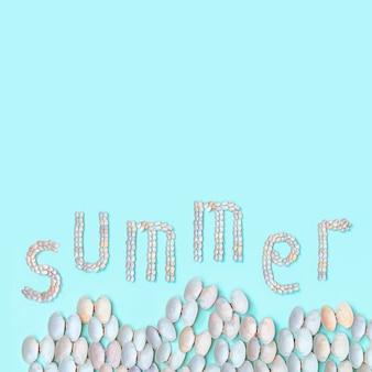 ターコイズ色の紙に白と柔らかなピンクの貝殻から夏の言葉。自然の美しい貝殻と夏のデザインコンセプト。