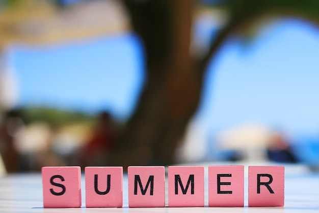 The word summer written on pink wooden cubes with blurred tree and sea background