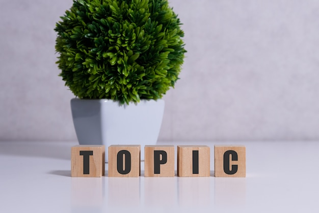 Word topic on white toy cubes with flower.