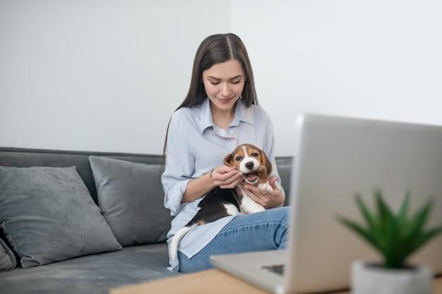 在宅勤務。ラップトップに座っているかわいい子犬と若い黒髪の女性