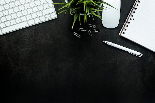 黒い机とキーボード、植物、マウスのある作業スペース