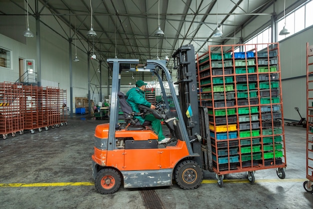 Worker driver of a forklift loader at warehouse transports boxes with cherry.