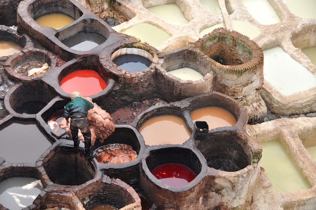 Worker lowers the skins into the tank ceramic containers with colored leather paint at the oldest tannery in fez morocco