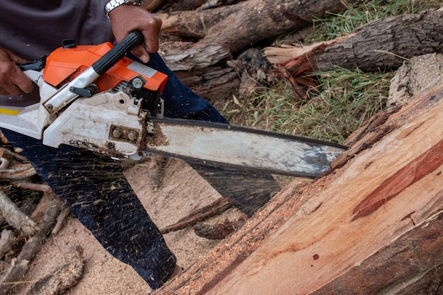 The worker works with a chainsaw. chainsaw close up. woodcutter saws tree with chainsaw. man cutting wood with saw, dust and movements.