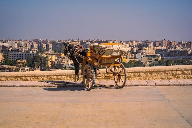 世界最古の葬儀記念碑であるギザのピラミッドで馬を持った労働者。エジプト、カイロ市