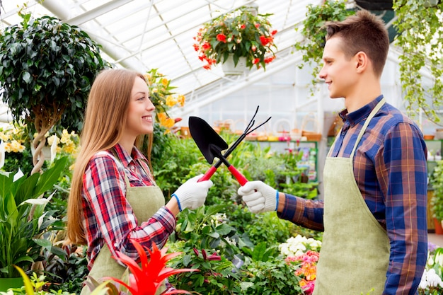 Working in the greenhouse