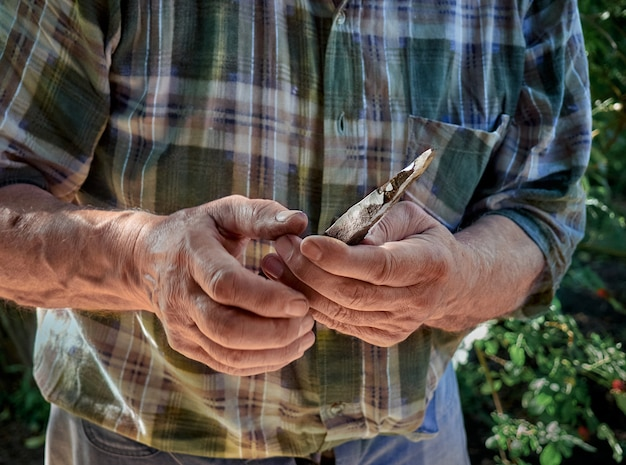 Working hands of an old man.