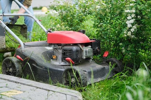 刈り取られた草で緑の芝生の上で働く芝刈り機。
