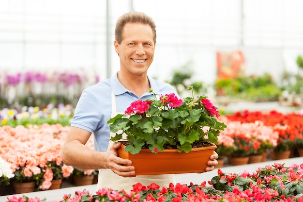 꽃 작업. 화분을 들고 녹색 집에 서있는 동안 카메라에 웃는 잘 생긴 성숙한 남자