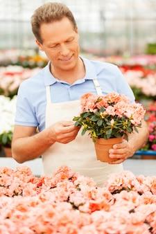 꽃 작업. 온실에 서 있는 동안 꽃 식물을 들고 제복을 입은 잘생긴 성숙한 남자