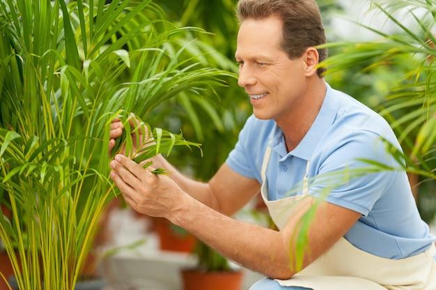 식물 작업. 제복을 입고 바쁜 정원을 가꾸는 잘생긴 성숙한 남자의 측면 보기
