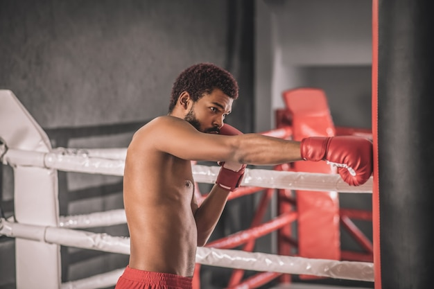 Workout. dark-skinned kickboxer having a workout in a gym and looking involved