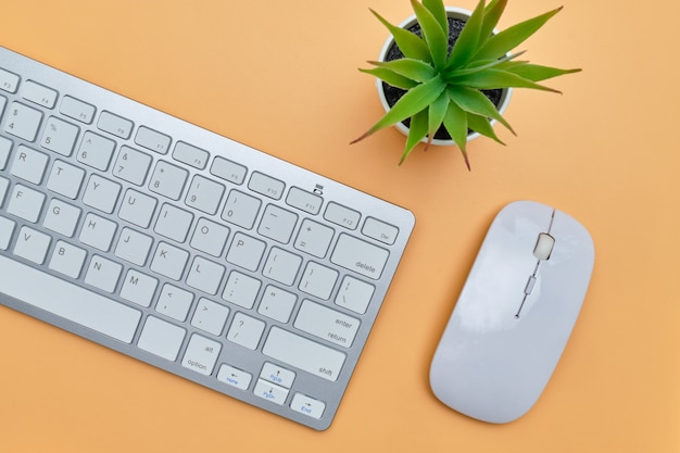 Workplace with a mouse, keyboard and plant on an orange background. top view.