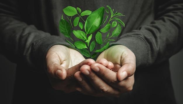 世界アースデイのコンセプト。グリーンエネルギー、再生可能で持続可能な資源。環境とエコロジーケア。ハートの形として緑の葉を浮かび上がらせる手のジェスチャー