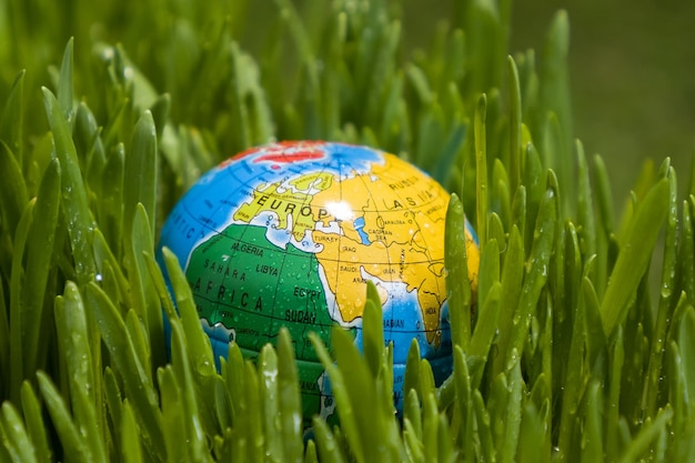 The world earth day, the globe lies on the grass