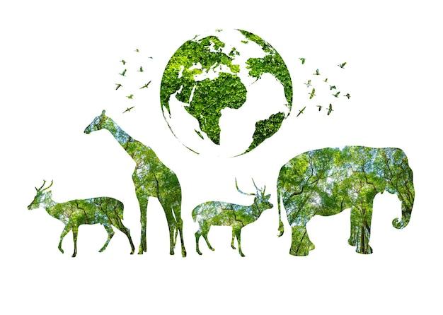 Силуэт леса во всемирный день дикой природы в форме концепции сохранения дикой природы и лесов диких животных
