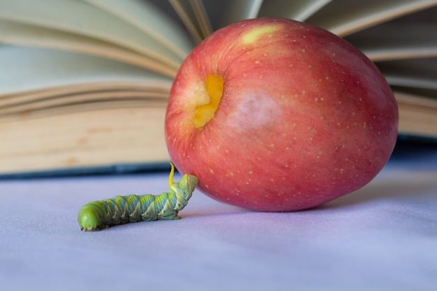 Worms and apples on blurred retro a book background,