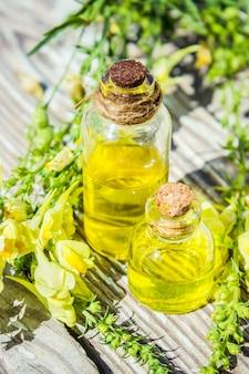 Wormwood extract. medicinal plants. selective focus. nature.