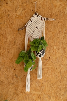Woven decoration for hanging plants on the wall Premium Photo